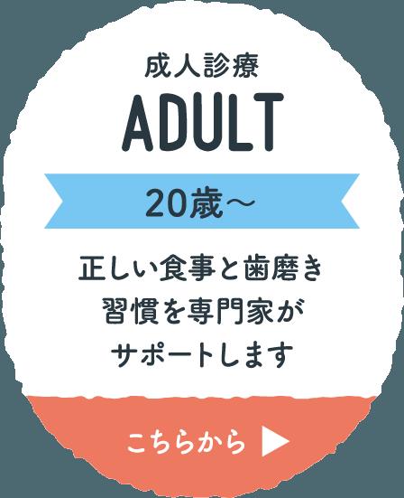 成人診療 ADULT 20歳〜 正しい食事と歯磨き習慣を専門家がサポートします こちらから