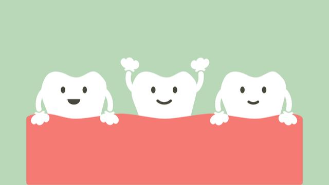 後から生える永久歯のために3つの隙間ができる